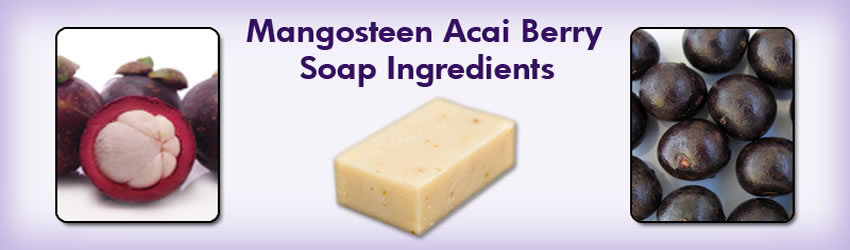 Natural Home Cures Mangosteen Acai Berry Soap Ingredients